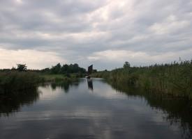 Hollands licht: Weerribben