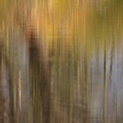 <!--:nl-->Over abstracte kunst. <!--:-->